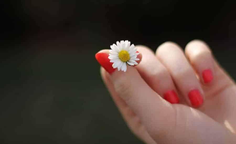 Острая красота, или как вырастить здоровые ногти